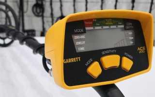 Garrett Ace 200i: обзор характеристик, сравнение с конкурентами, отзывы владельцев и видео с находками