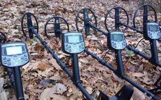 Российские металлоискатели: особенности, критерии стоимости и топ-5 отечественных металоискателей