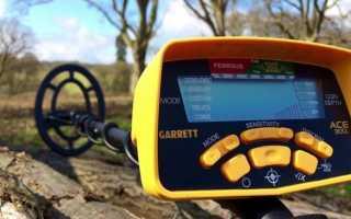 Garrett Ace 300i — подробный обзор, сравнение с конкурентами, отзывы клиентов и видео с полей
