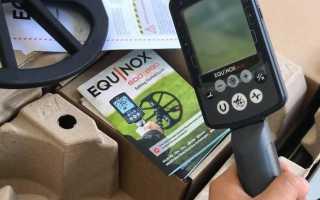 Minelab Equinox 600: подробный обзор, отзывы владельцев, сравнение с конкурентами и т.д.